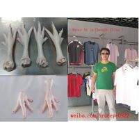 Urgently Buy Frozen Chicken Paw and Feet thumbnail image