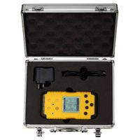 Portable multi gas detector   RH-1200