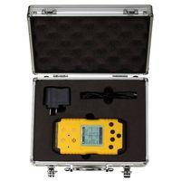 Portable multi gas detector   RH-1200
