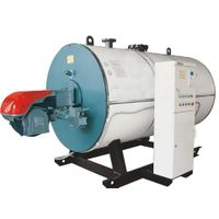 WNS Series Auto Gas or Oil Fired hot water Boiler thumbnail image