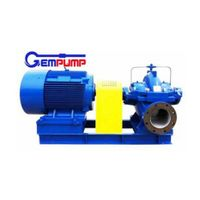 Ds Single Stage Double Suction Irrigation Water Pump