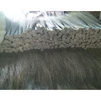 Palm ekel broom