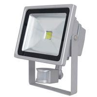 PIR Motion Sensor LED Flood Light Grey