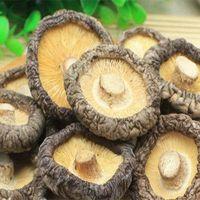 Dried Shiitake Mushroom thumbnail image