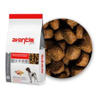 Avantis Performance pet food for high activity dogs