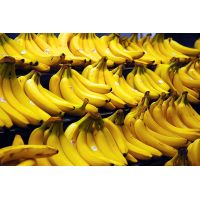 Cavendish Banana thumbnail image