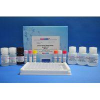 Melamine ELISA Test Kit