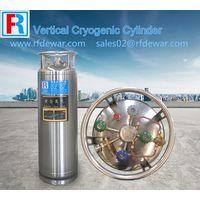DPL175L DPL195L DPL210L DPW499L Cryogenic cylinder