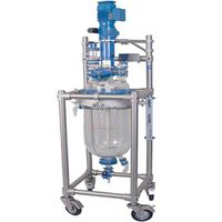 Henan Blue Sail R 10L-100L laboratory double layer jacketed glass reactor