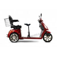 500W/800W Two Seat Electric Mobility Scooter with Basket (TC-016D) thumbnail image
