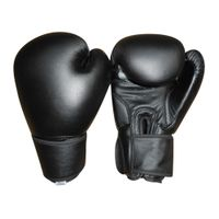 Deluxe Boxing Gloves thumbnail image