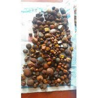 Cow/Ox Gallstones for sale