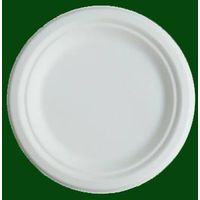 disposable bagasse plate