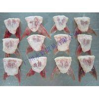 frozen fish fin