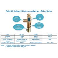 LPG intelligent quick on valves