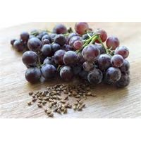 Grape Seeds Extract with Polyphenols 95%