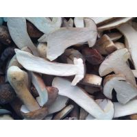 2013 New Crop Frozen Boletus Edulis(half cut)