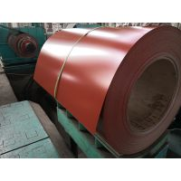 Coated Steel Coil PPGI Factory Price