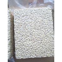 TANZANIA CASHEW NUTS PROCESSING COMPANY