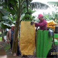 Banana protection Paper bag Fruit Growing Bags