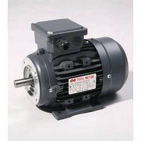 TT0005  Electric Motor