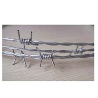 Double Twist Barbed Wire thumbnail image