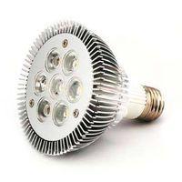 7*1W, 7*3W Dimmable PAR30 Led Light bulbs