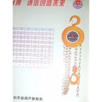 chain block HSZ1-20T