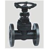 forged steel flang gate valve thumbnail image