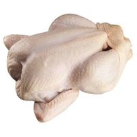 BRAZIL HALAL FROZEN WHOLE CHICKEN, FROZEN CHICKEN PAWS FROZEN PROCESSED