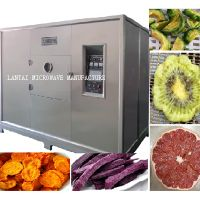 LANTAI Microwave food dehydrator machine