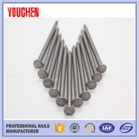 Moderate price high quality common wire iron nails