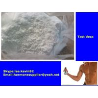 Testosterone decanoate steroids powders thumbnail image