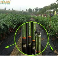 Hot sell weed control nonwoven fabric for agriculture