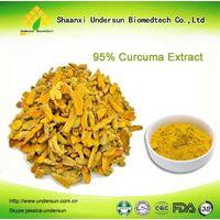 Curcuma Extract / Curcuma Longa Extract / Curcumin Powder 95%
