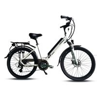 manufacturer 20'' city ebike with 10.4 Ah