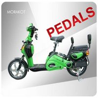 Canada 350W electric bike/ bicycle with double seat --LS5-4 thumbnail image
