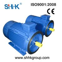 Y series asynchronous brake induction motor of China
