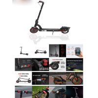 Super power Scooter for the adults 350W 10.4Ah 36V L2 Pro thumbnail image