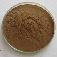 High quality Tongkat Ali extract powder for men's health