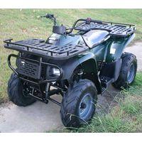 atv 250cc automatic transmission(cougar)