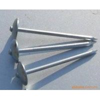 galvanized ROOFING common nails with umbrella (factory direct)