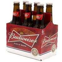 BUDWEISER 12X30CL BOTTLES OFFER