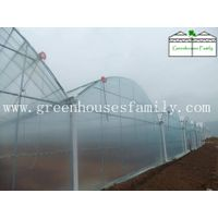 Commercial Gutter Connected Greenhouses from China thumbnail image
